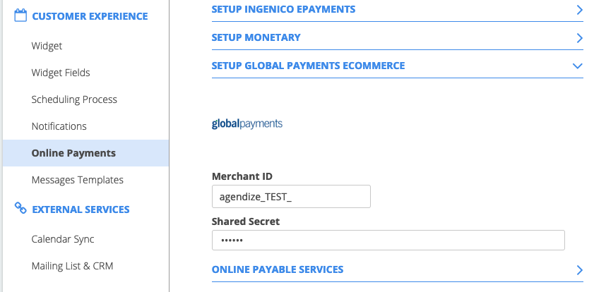 Online_Global_Payments